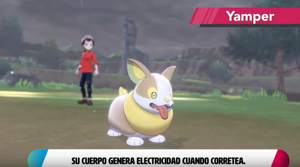 Yamper Pokemon
